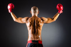 Pugile muscolare in studio Immagine Stock