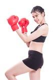 Pugilista - luvas de encaixotamento desgastando do encaixotamento da mulher da aptidão Fotografia de Stock