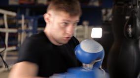 Pugilista masculino contratado no gym, batendo a pera vídeos de arquivo