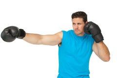 Pugilista masculino determinado centrado sobre seu treinamento Foto de Stock Royalty Free