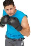 Pugilista masculino determinado centrado sobre seu treinamento Foto de Stock