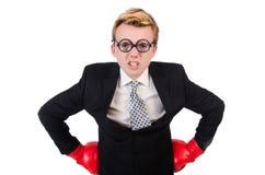 Pugilista novo do homem de negócios Fotografia de Stock Royalty Free