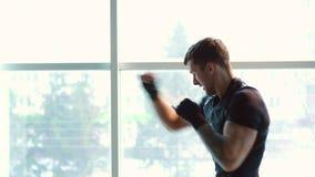 Pugilista que faz a luta com sombra no gym vídeos de arquivo