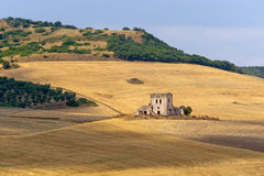 Between Puglia and Basilicata (Italy), landscape Royalty Free Stock Images