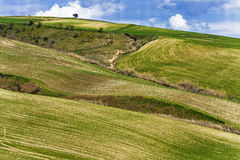 Puglia's Landscape Stock Images