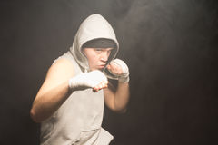 Pugnacious young boxer in a fight Royalty Free Stock Photography