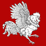 Pugnacius rooster coloring on red Stock Images