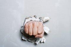 Pugno Fotografia Stock Libera da Diritti