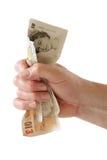 Pugno di soldi Immagine Stock