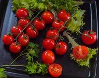 Pugno rosso dei pomodori carpale su un vassoio nero con i ramoscelli di prezzemolo e di insalata verdi Fotografia Stock