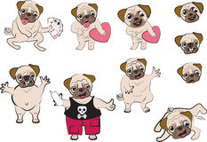 Pugs cartoon Stock Images