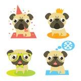 Pugs engraçados em situações diferentes Fotos de Stock Royalty Free