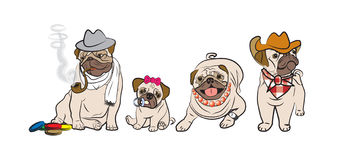Pugs family. Vector illustration of four pugs Stock Images
