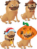 Pugs hipster, christmas, halloween Royalty Free Stock Images