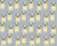 Pugs meditation yoga pattern. Cute dogs. Stock Photo