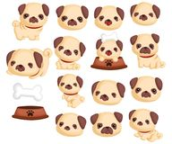 Pugs Vector Set Collection Stock Photography
