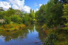 Puhoi River Auckland New Zealand. Calm place Stock Photos