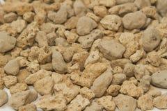 Puimkiezelstenen (lichtgewicht vulkanische rots) royalty-vrije stock afbeelding