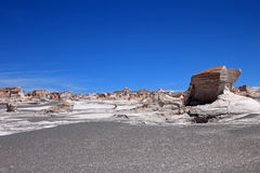Puimstenen in Campo DE Piedra Pomez, Catamarca, Argentinië Stock Afbeelding