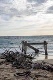 Puin op strand Royalty-vrije Stock Afbeelding