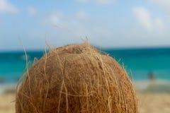 Puisque toujours son un plaisir ont une noix de coco sur la plage Images stock