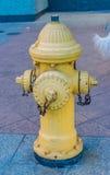 Puissance de feu de bouche d'incendie Image stock