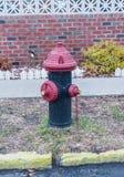 Puissance de feu de bouche d'incendie Photo stock