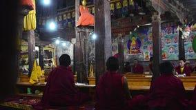 Puja diario con los monjes budistas jovenes almacen de metraje de vídeo
