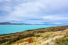 Pukaki Lake - New Zealand Royalty Free Stock Images