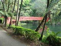 Pukekura-Brücke Stockfotos