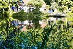 Pukekura park lake. Beautiful park with lakes in New Plymouth NZ stock photo