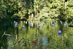 Pukekura parka jezioro obraz royalty free