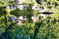 Pukekura parka jezioro zdjęcie stock