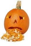 Puking pumpkin stock photography