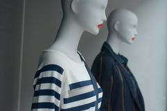 pulôver dos azuis marinhos das listras e revestimento do inverno no manequim na sala de exposições da loja da forma para mulheres fotos de stock