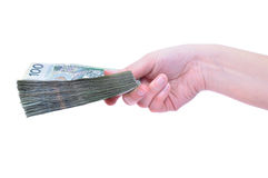 Pula los billetes de banco a disposición aislados Fotos de archivo libres de regalías