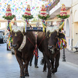 Pula Sant'Efisio Stock Photo