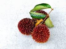 Pulasan Früchte Lizenzfreie Stockbilder
