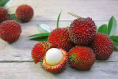 Pulasan fruit (Nephelium mutabile Blume). Is a tropical fruit closely linked to the rambutan. Pulasan is wild rambutan. The skin is thick with short and stumpy Royalty Free Stock Photo