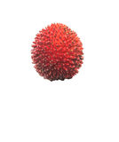 Pulasan Fruit or Nephelium Mutabile IV Stock Photo
