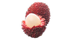 Pulasan Fruit or Nephelium Mutabile VI Royalty Free Stock Images