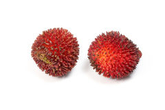 Pulasan Spikey Unique Fruit Stock Image