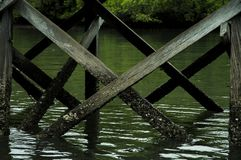 Pulau Rinca - Parc εθνικό Komodo - λόρδος στοκ εικόνες