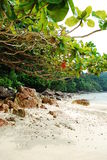 pulau tenggol 免版税库存照片