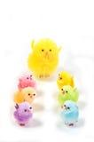 Pulcini di Pasqua Fotografia Stock