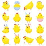 Pulcini di Pasqua nell'erba isolata su bianco Pollo del bambino della primavera, pulcino giallo sveglio ed insieme dell'illustraz royalty illustrazione gratis