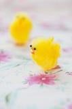 Pulcini gialli del giocattolo per la decorazione di Pasqua Immagini Stock