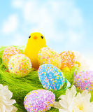 Pulcino con le uova di Pasqua Fotografia Stock