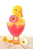 Pulcino di Pasqua Fotografia Stock Libera da Diritti