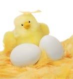Pulcino ed uova di Pasqua Immagini Stock Libere da Diritti